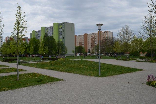 Street- Workoutový park Družba